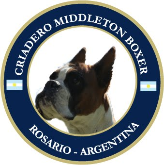 MIDDLETON BOXER