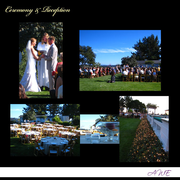 san jose santa cruz aptos campbell wedding planner coordinator san francisco