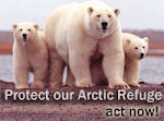 Help protect the polar bears and other animals..