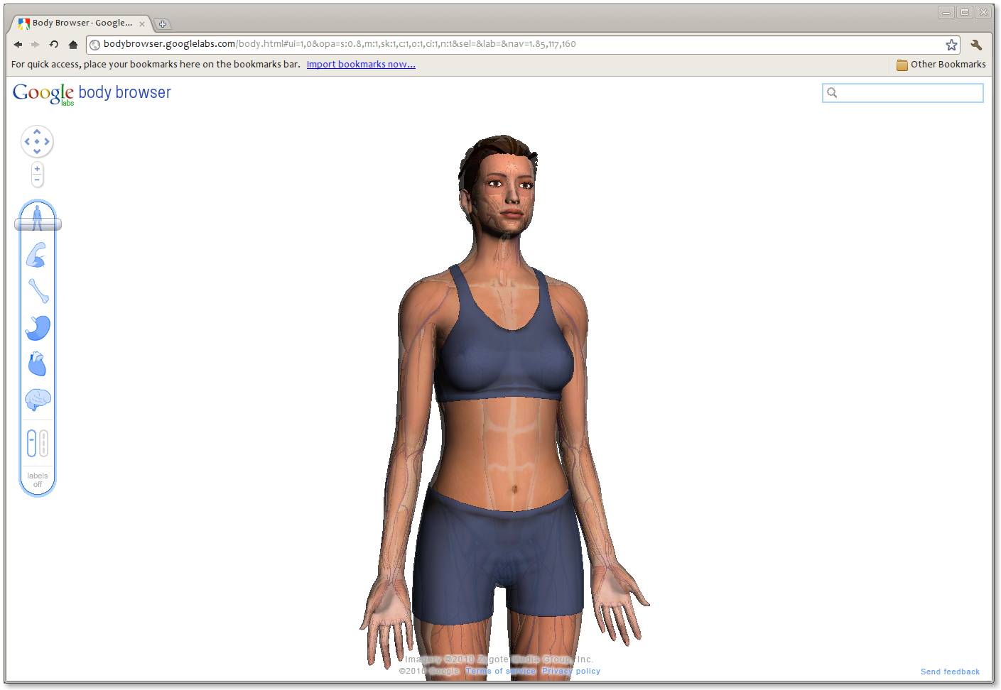 Debian Bits And Snips: Body Browser: Google Maps of the Human Anatomy
