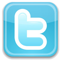 Twitter do Noam!