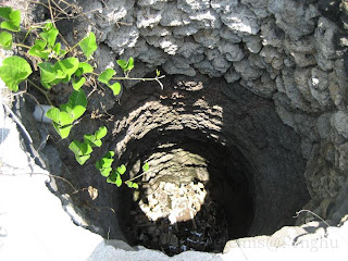 菓葉灰窯的井