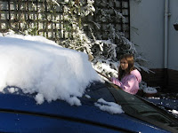 Lauren sweeps snow off the car