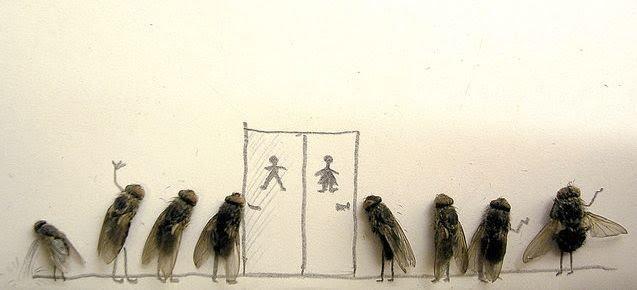 [dead-fly-art-11.jpg]