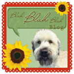 Blah, Blah, Blah Blog