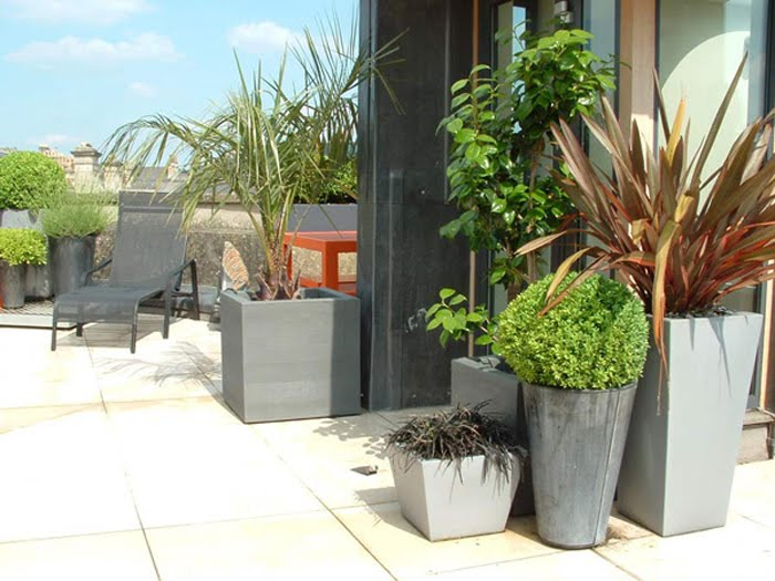 ... Best Architects Bluesky English Landscapes, Clair Strong Interior  Styling And Simon Morray Jones Architects. Planted The Beautiful Greenery,  ...