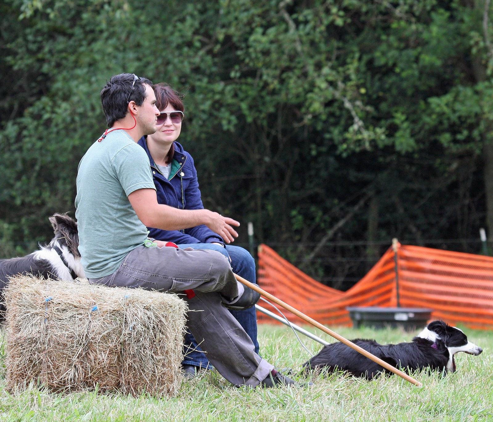 Sue Macdonald Dog Training