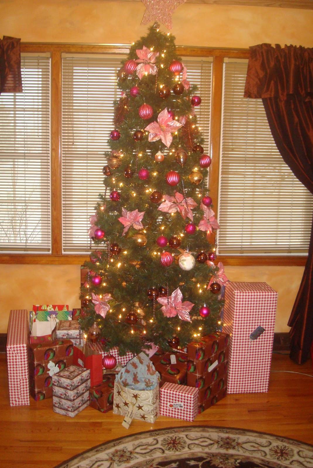 http://1.bp.blogspot.com/_b0MUvvce5Ow/TRS2tCyH2wI/AAAAAAAACgA/2W0IgaFMBww/s1600/tree+002.JPG