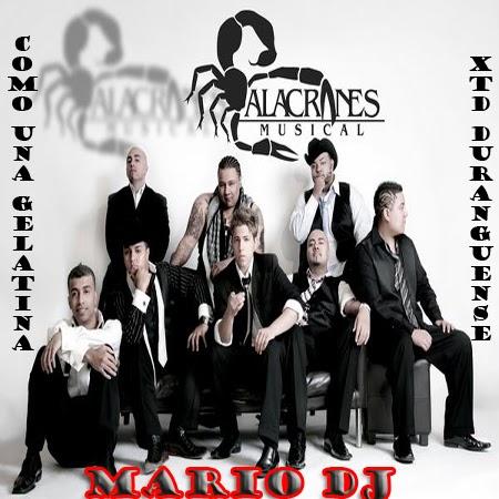 LETRA COMO UNA GELATINA - Alacranes Musical | Musica.com