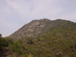 Alto del pinar