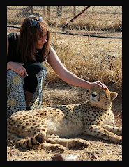 Cheetah Conservation South Africa