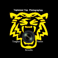 Yoplensor Yop Studio Photographpy