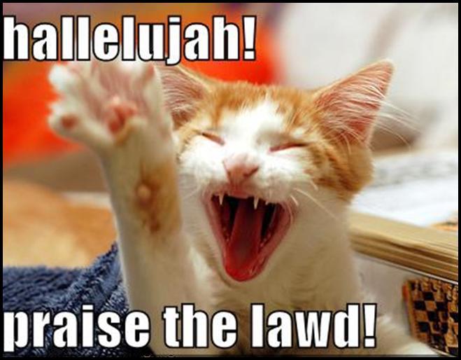 [Praise+the+Lawd+Cat.jpg]