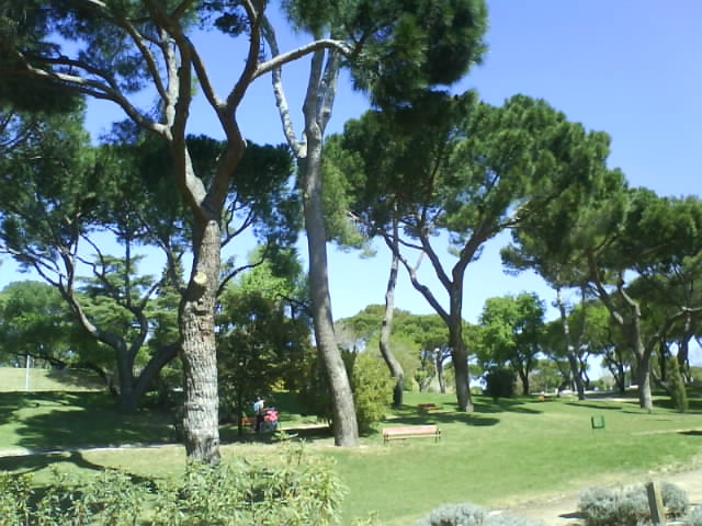 Parque de la Dehesa la Villa en Madrid