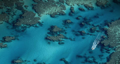 Great Barrier Reef Bing Wallpaper