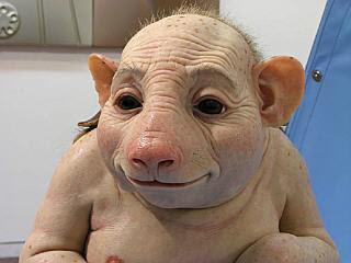Pig Human
