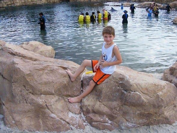 Dolphin Cove Virginia Beach