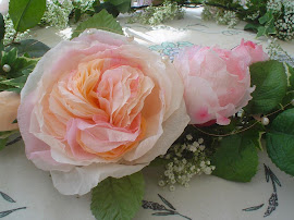 english rose