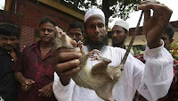 Mokhairul Islam