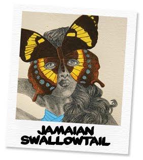 jamaican swallowtail