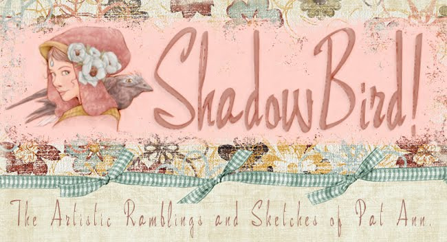 ShadowBird: The Work of P.A. Lewis