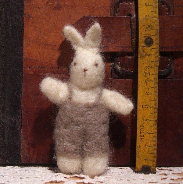 [conejo.jpg-]