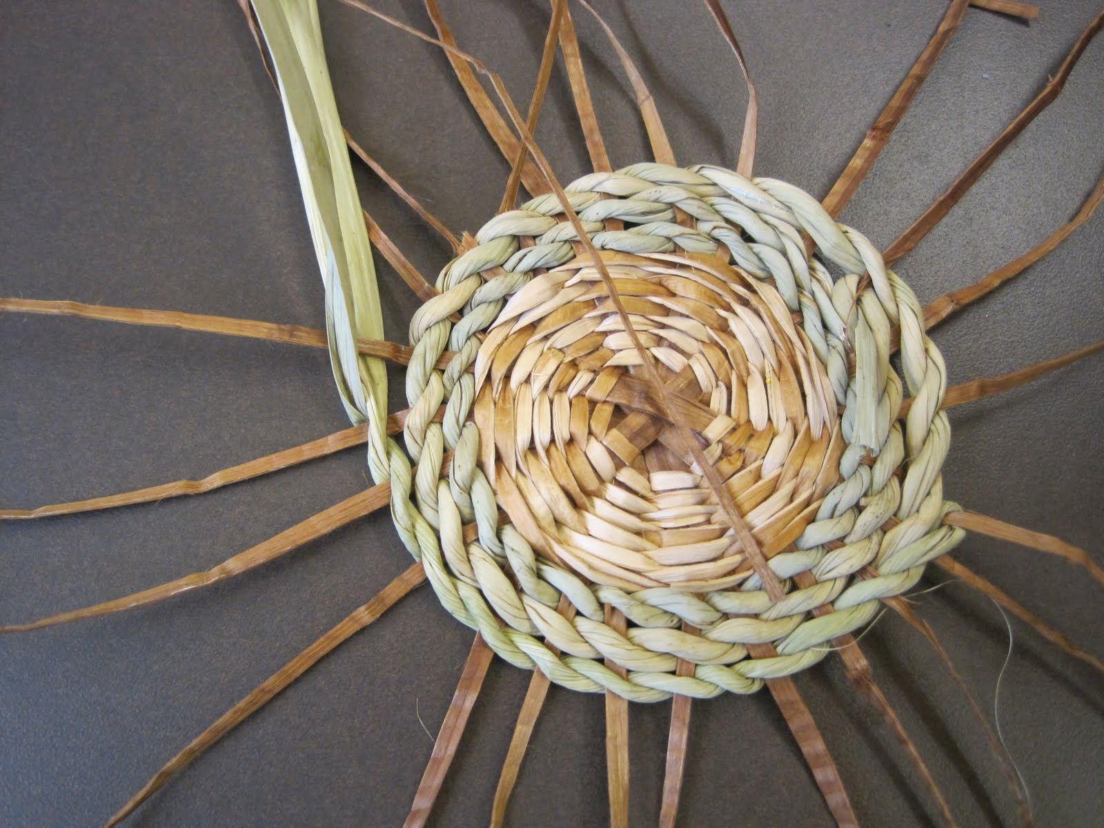 How To Weave A Cattail Basket : Meandering washington october
