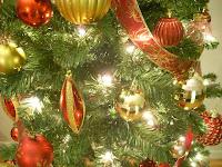 El arbolito de navidad... ahora si estamos en Canadá