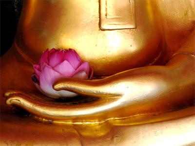 http://1.bp.blogspot.com/_b9N-E81zXwg/TP-yVPP4NXI/AAAAAAAAMKE/5DQChZHWZqE/s1600/Buddha-with-flower.jpg