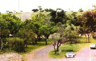 Balneario Las Cañas. Departamento de Soriano. Fray bentos. Uruguay. Turismo en Las Cañas. Que hacer en las Cañas