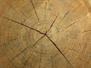 [Wood]