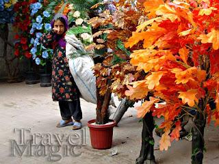 pakistan-girl-street-life-lahore