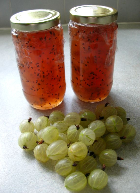 Carla nayland historical fiction july recipe gooseberry jam - Jam without boiling easy made flavorful ...