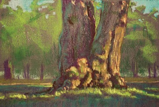 pastel painting plein air tree high park setting sun soft pastels
