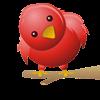 Estou no Twitter!!