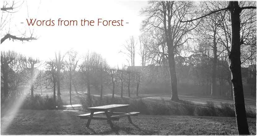 Words From The Forest