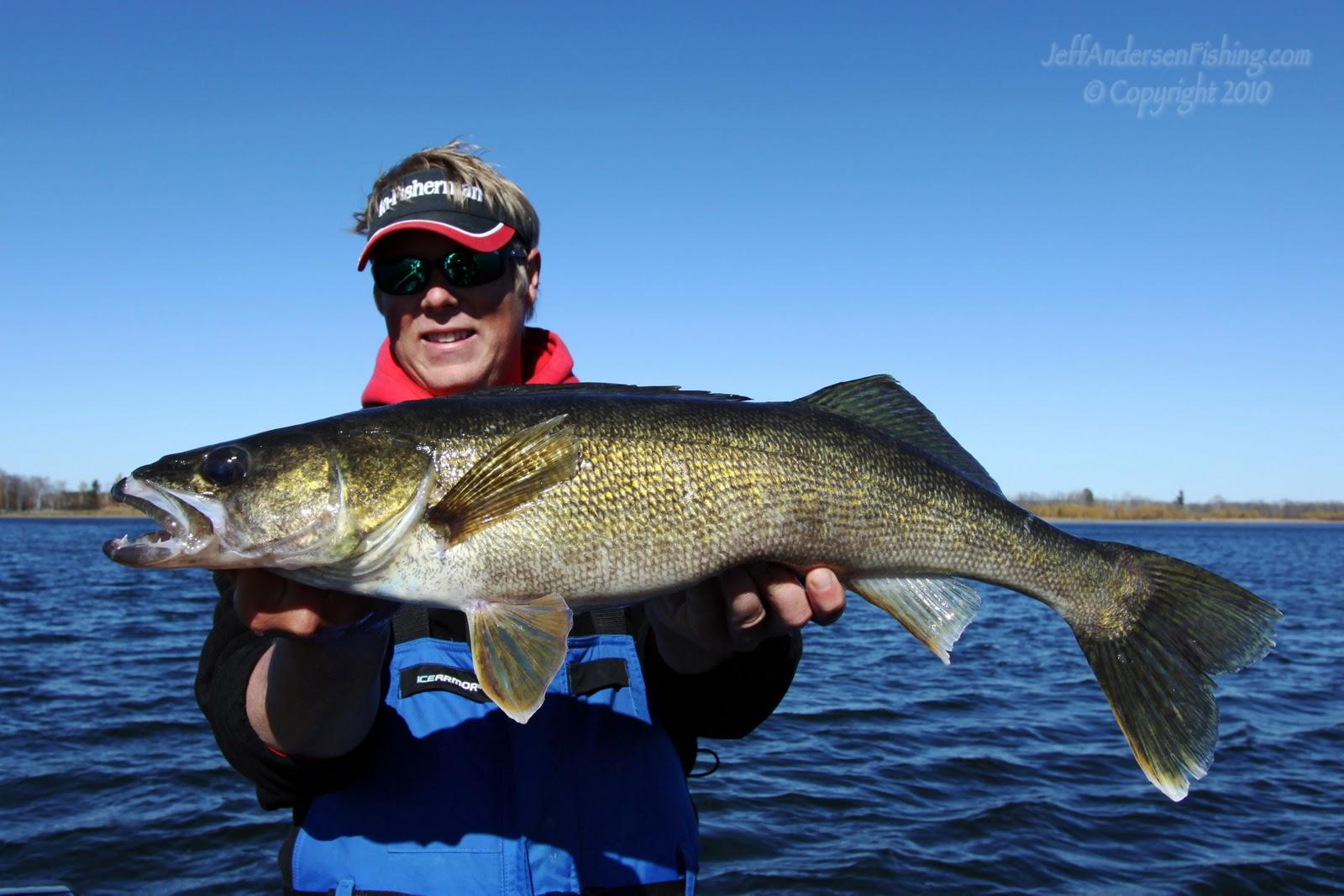 Jeff jiggy andersen fishing photography huge leech lake for Leech lake fishing