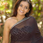 Meera Vasuden Hot Neval Show In Transparent Saree