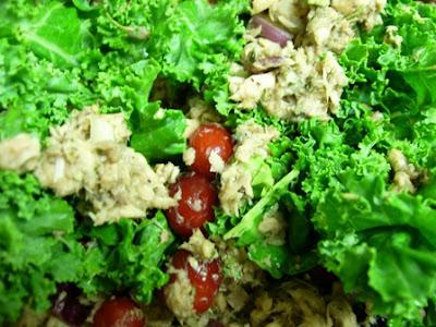 Gluten Free Dairy Free Cranberry Salmon Salad
