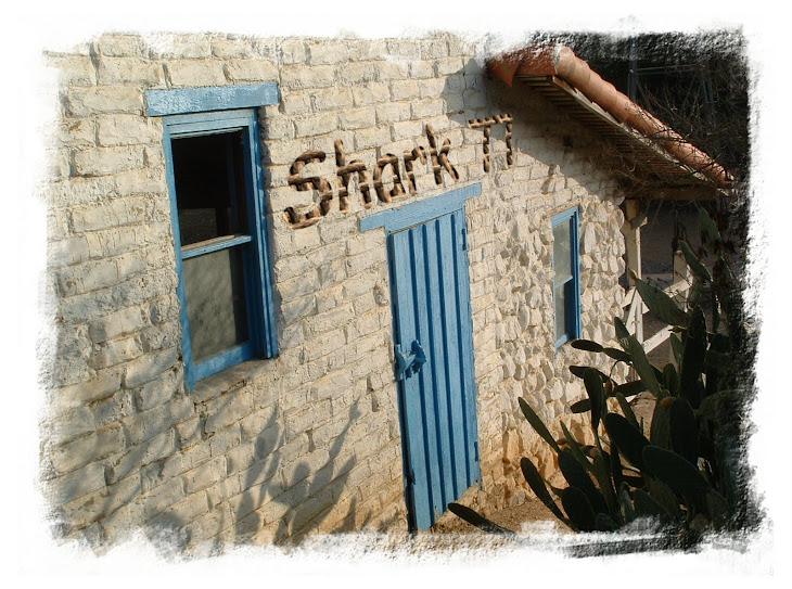 SHARK 77