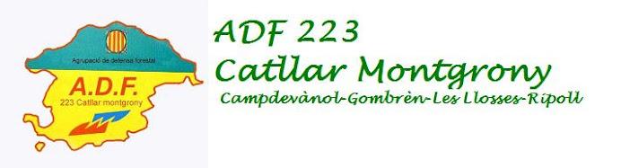 "ADF 223 ""Catllar-Montgrony"""