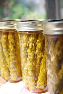 Canned pickled asparagus