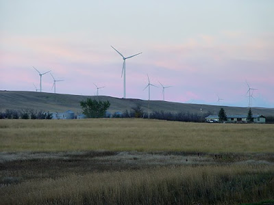 wind turbines, MT, dawn