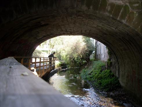Mi trayecto por el río.