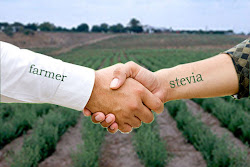 KONTRAK PENGURUSAN LADANG STEVIA
