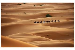 sahara desert africa