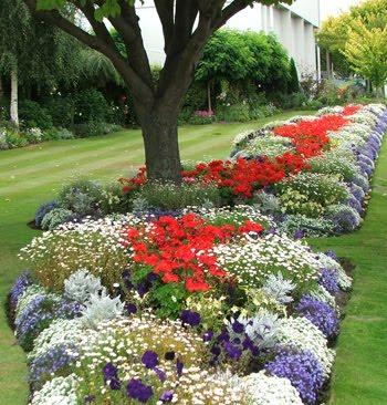 florist wilmington nc bloomers