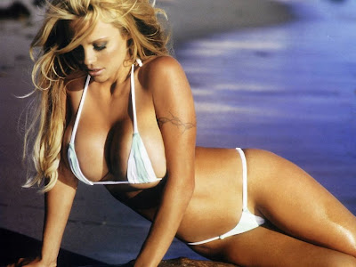 pamela anderson wallpapers. Pamela Anderson Wallpaper