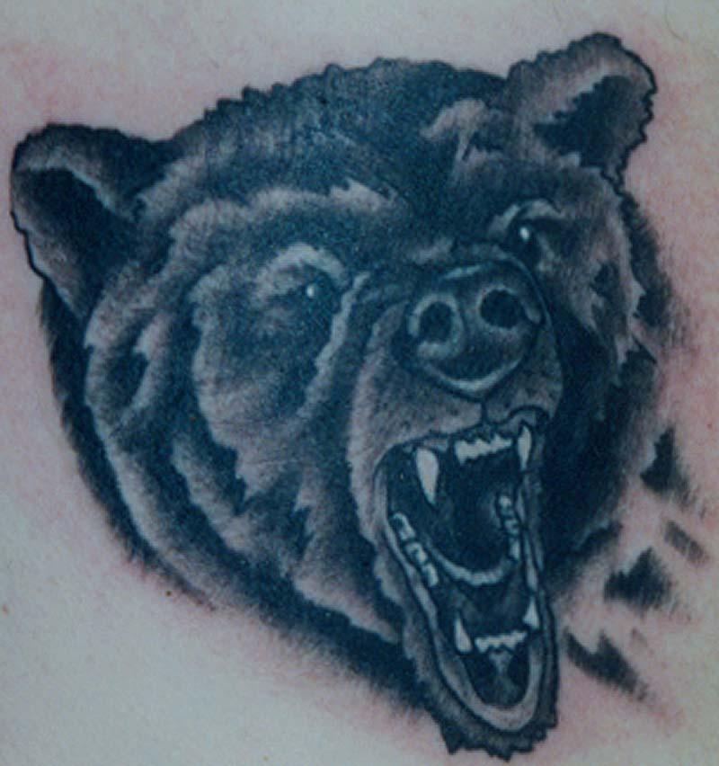 Bear Head Tattoos