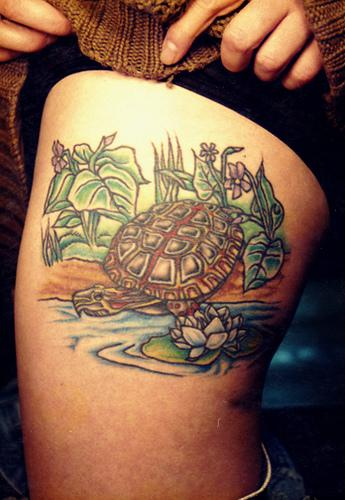 Chuck Vandervort's turtle tattoo… and an actual turtle. Turtle Tattoos